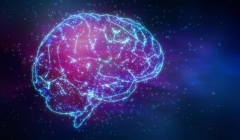 Hogyan változtatja meg az internet az agyunkat?