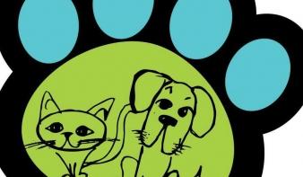 Segítségkérés a kutyamenhely felújításához