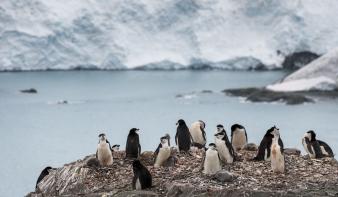 Abnormális tavaszi idő van az Antarktisznál
