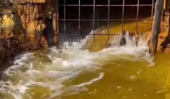 Tovább szivárog a nehézfémeket tartalmazó bányavíz a Máramaros megyei tárnából