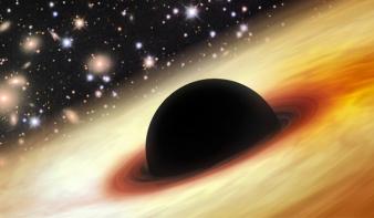 Gigantikus feketelyukszörnyet találtak