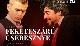A budapesti József Attila Színház Nagybányán!