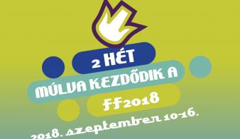 Két hét múlva startol a 2018-as Főtér Fesztivál - Nagybányai Magyar Napok!