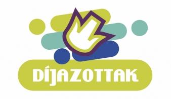 A Főtér Fesztivál 2018 - Nagybányai Magyar Napok díjazottai