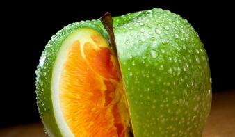 Nem kell génmódosított élelmiszert ennünk