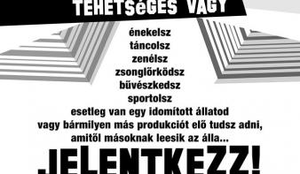 Erdélyből is várnak jelentkezőket a Hungary's Got Talent-ra