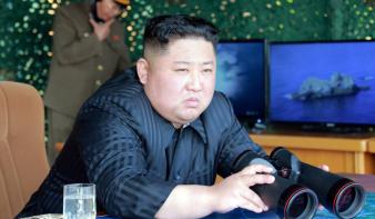 Három lehetséges forgatókönyv, Észak-Koreára vetítve