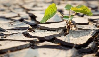 Romlik az esély: mérföldkövet lépett át a klímaváltozás