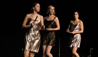 A budapesti Maladype Színház ismét Nagybányán