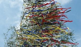 Újból felelevenítették Hosszúmezőn a májusi szerenádozást