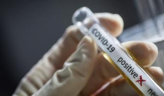 Járványhelyzet alakulása Máramarosban a decemberi hónap folyamán