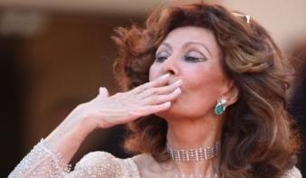 Sophia Loren lesz a TIFF díszmeghívottja