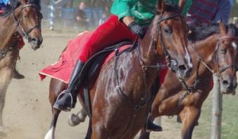 Lemhény lovasa nyerte a Székely Vágtát