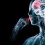 A placebo akkor is működik, ha tudjuk, hogy nem igazi gyógyszer