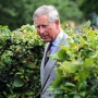 Erdély hercege titulust adományozna Gyulafehérvár a brit trónörökösnek
